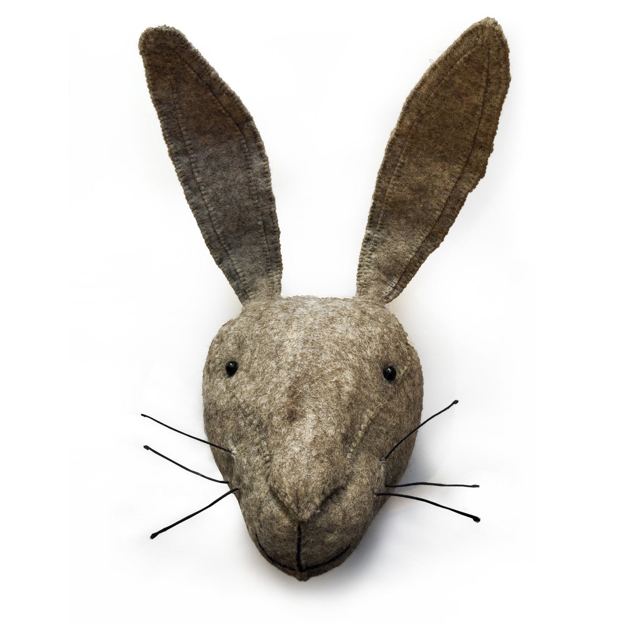 Hare Head by Fiona Walker